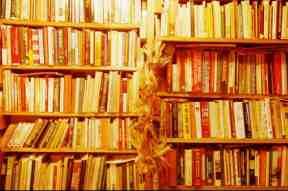 LongBookShelf