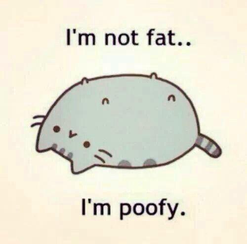 poofy