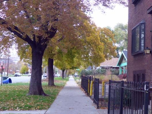 fall-sidewalk