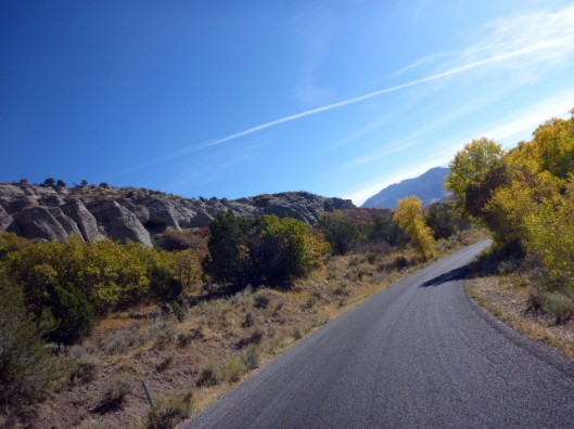 rocks-trees