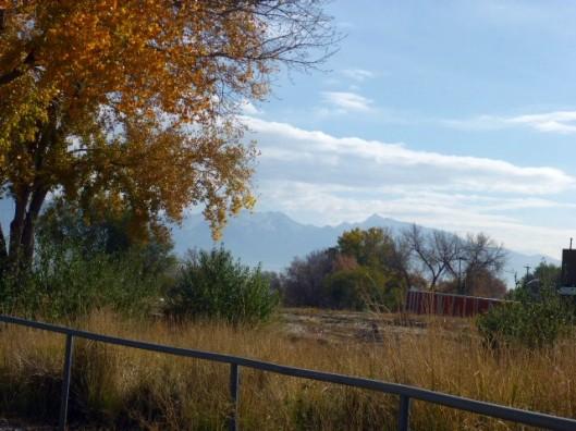 autumn-view