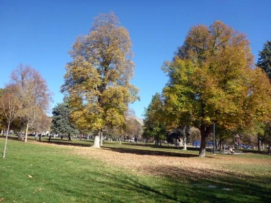 park-space