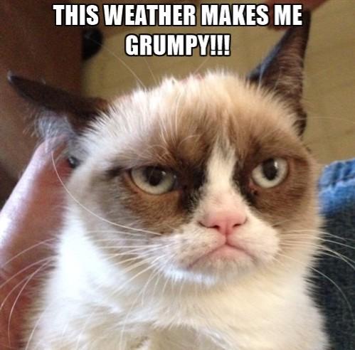 weather?w=529 gloomy, grumpy day wendy the wanderer