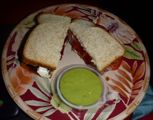 condiment-sandwich