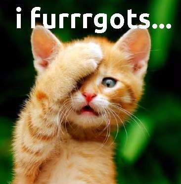 furrrgot